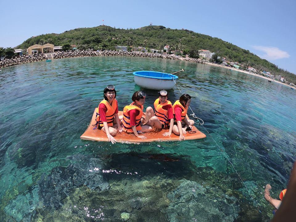 lặn ngắm san hô tại cù lao xanh
