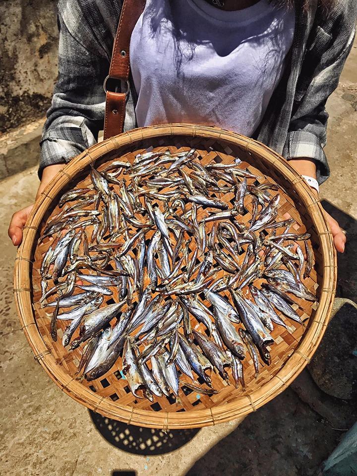Những mẻ cá khô rất đời thường, rất dân quê. Ảnh: Trần Thị Thu Hương