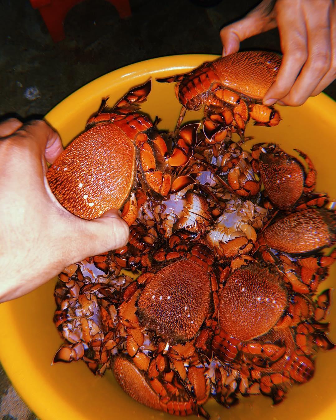 Cua huỳnh đế là món ăn hải sản mà bạn nhất định phải thử ghi đến Eo Gió - Ảnh: noht_