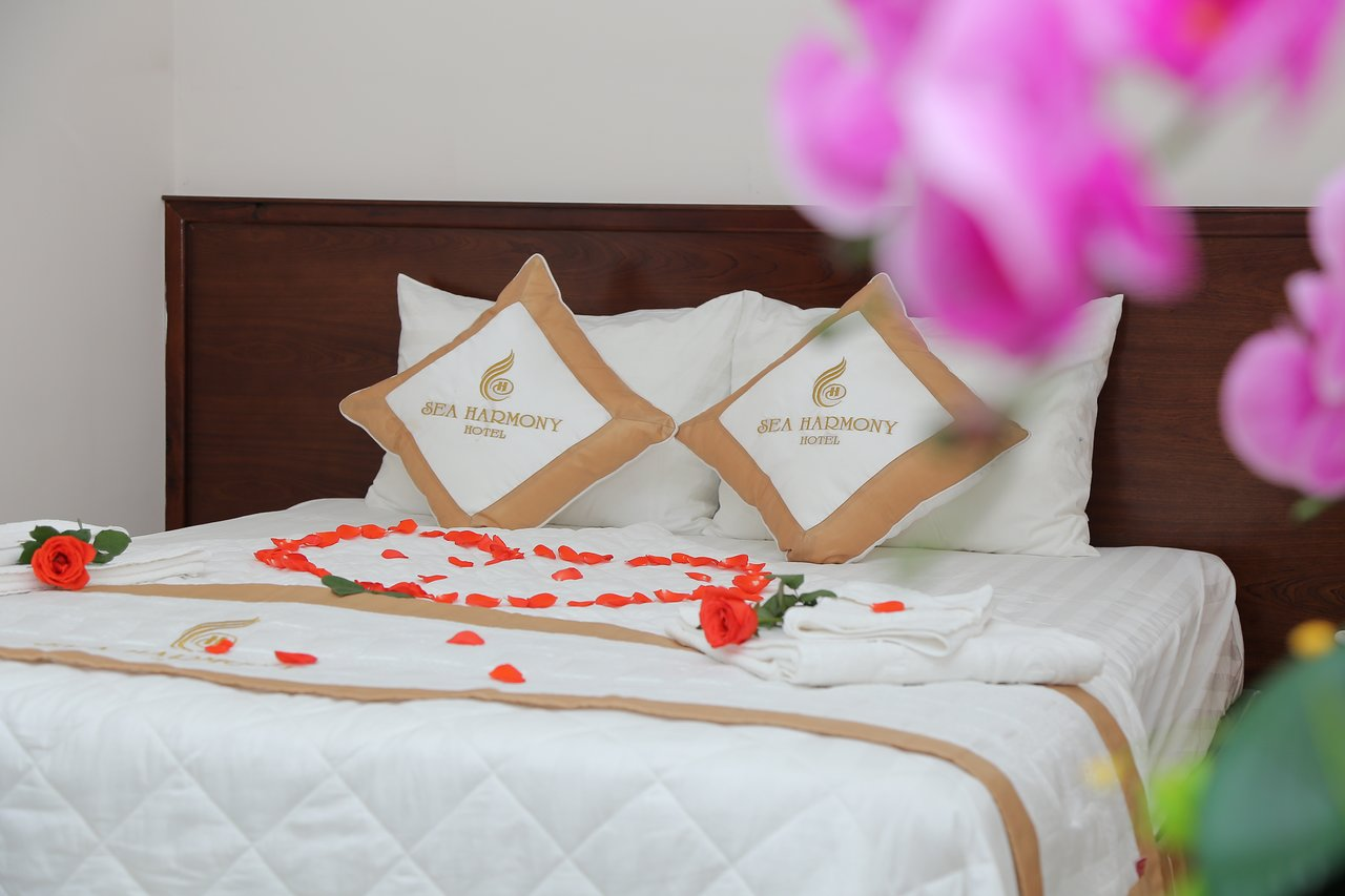 Khách sạn Quy Nhơn 3 sao thích hợp với những cặp đôi tận hưởng kì nghỉ bên nhau - Ảnh: Sea Harmony