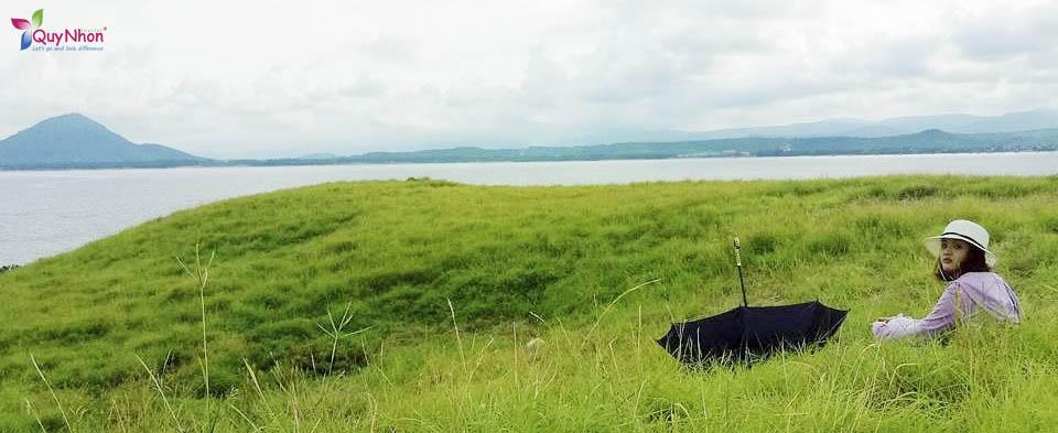 đồng cỏ xanh trên đảo Hòn Chùa