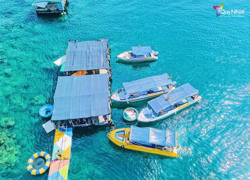 tour kỳ co - lặn san hô bãi dứa nửa ngày đón tại nhơn lý
