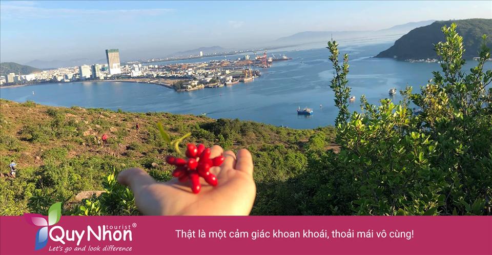 Đứng trên đỉnh núi Đá Đen bạn sẽ được hít thở không khí trong lành, ngắm nhìn toàn cảnh thành phố biển Quy Nhơn xinh đẹp. Thật là một cảm giác khoan khoái, thoải mái vô cùng!